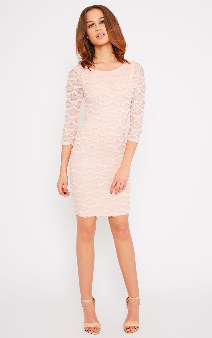 Valentina Pink Eyelash Sleeve Dress 4
