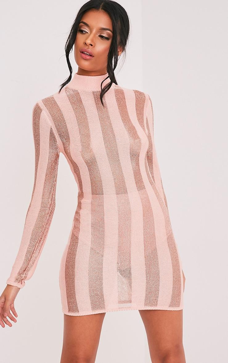 Amias robe mini rose pâle métallisé à rayures 1
