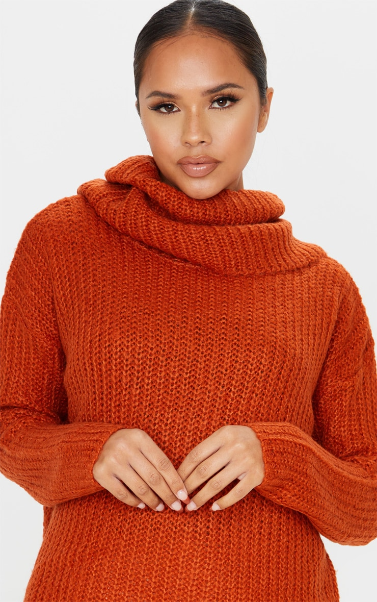 Rust Soft Knit Roll Neck Sweater 5