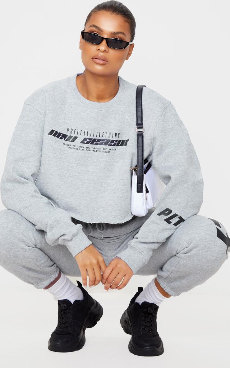 PRETTYLITTLETHING Grey New Season Slogan Cropped Sweater 1