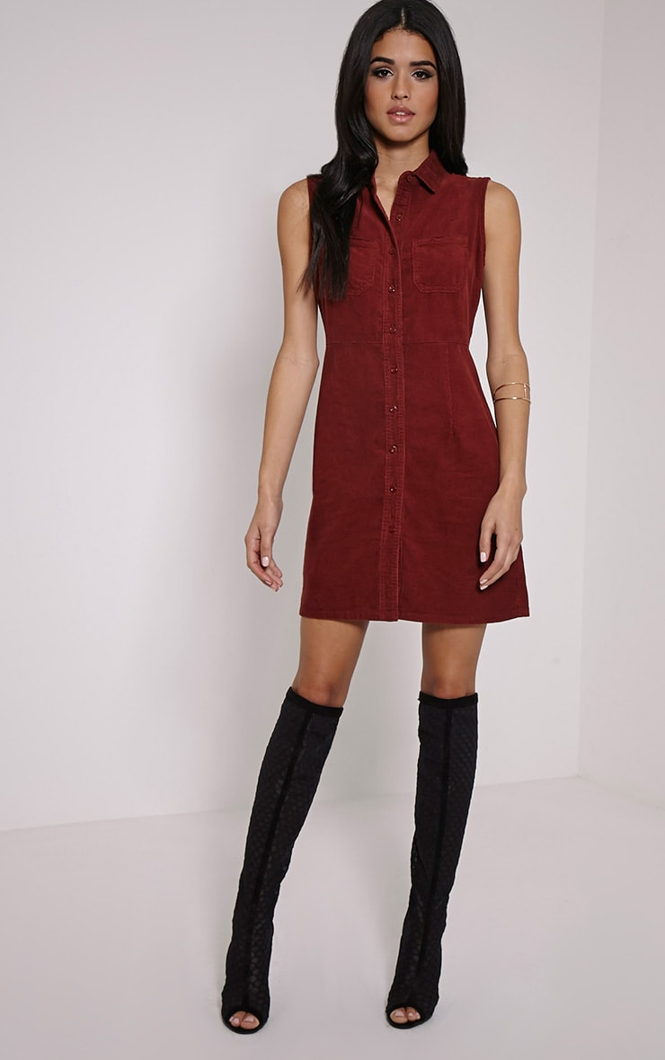 Ritta Rust Button Front Cord Dress 3