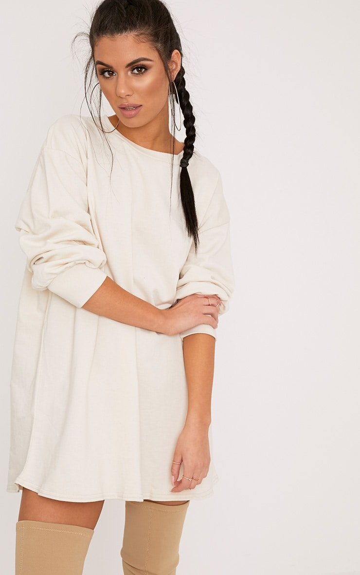 Sianna Taupe Oversized Sweater Dress 1
