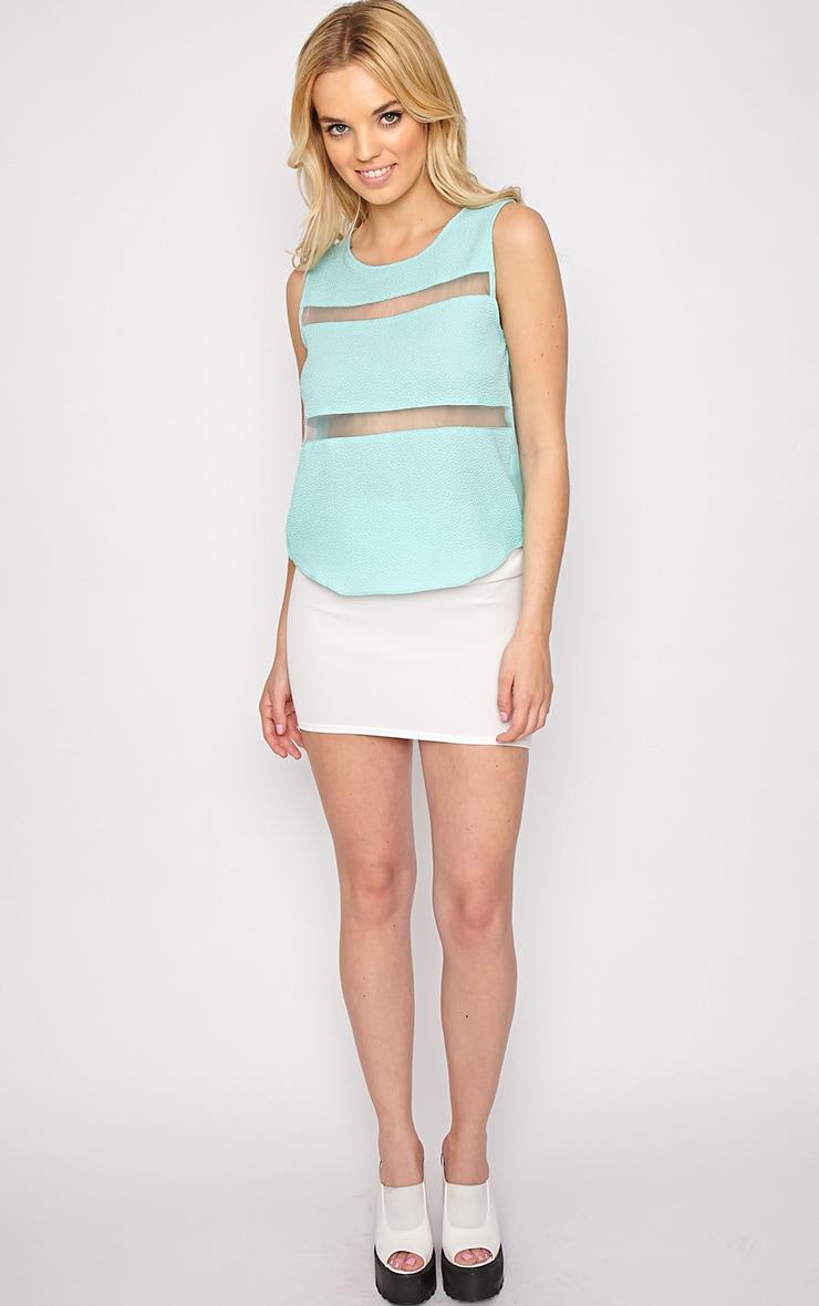 Adrianne Mint Mesh Stripe Top  3