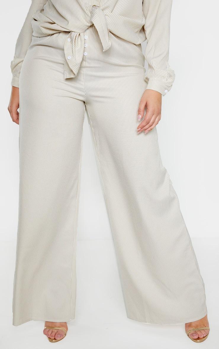 Plus Stone Striped Button Detail Wide Leg Pants  2