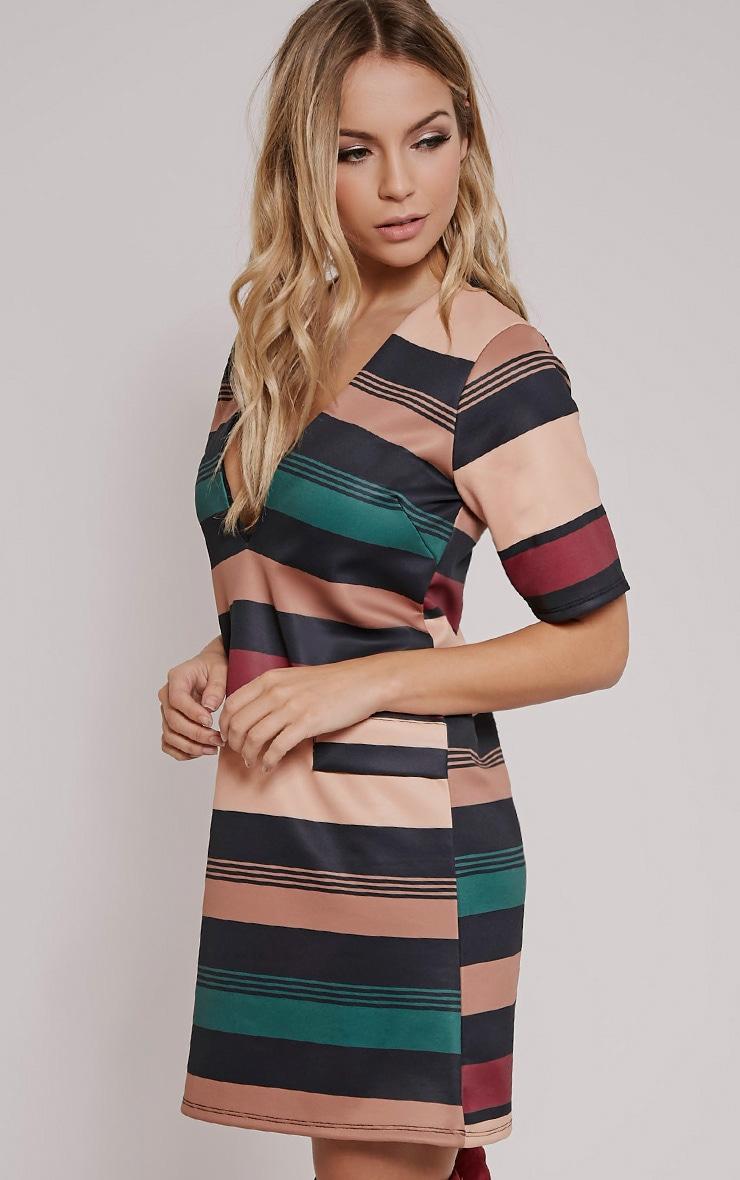 Raean Taupe Stripe Box Sleeve Shift Dress 4