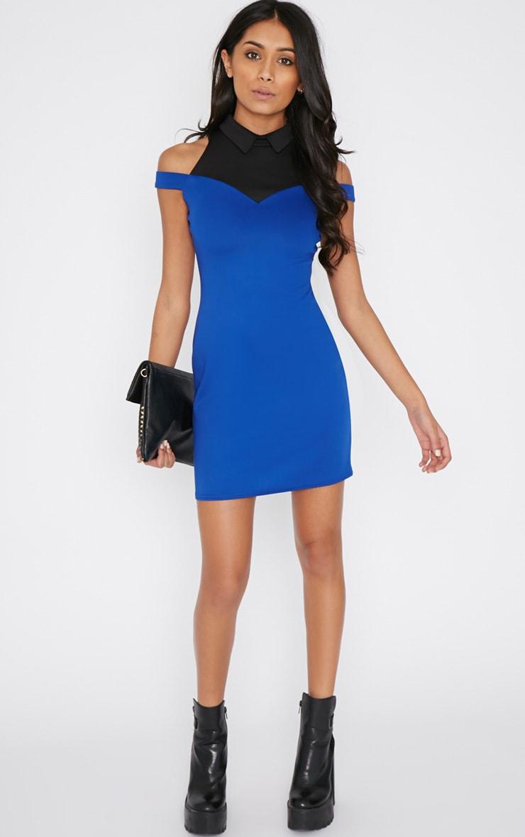 Miriam Cobalt Collar Dress  3