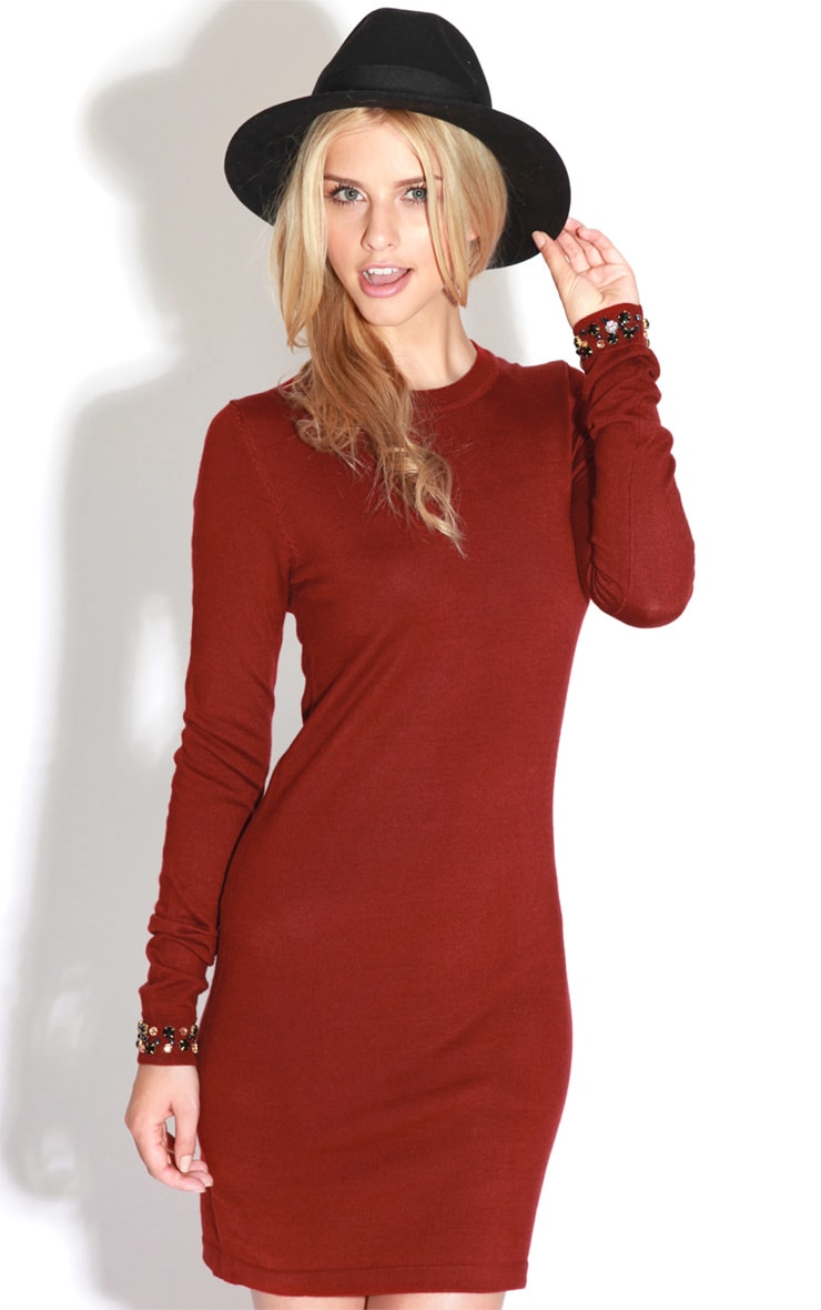 Fion Burgundy Long Sleeve Jumper Dress 1