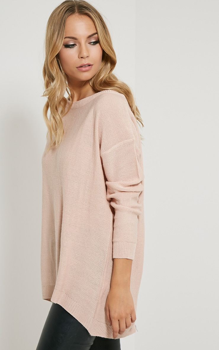 Amia Pink Zip Back Jumper 4