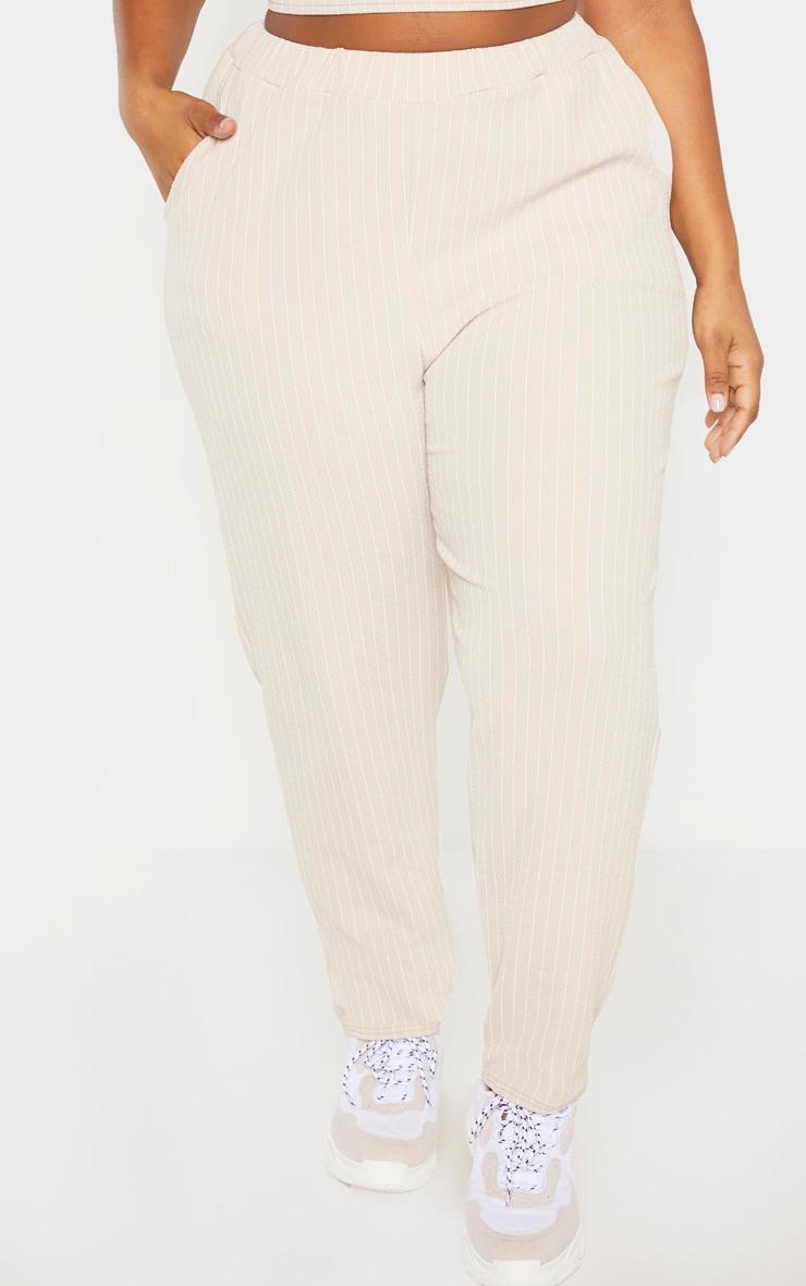 PLT Plus - Pantalon droit gris pierre à fines rayures 2