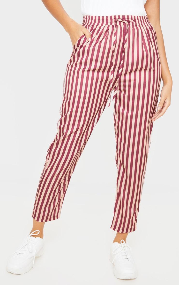 Rust Stripe Casual Pants 2