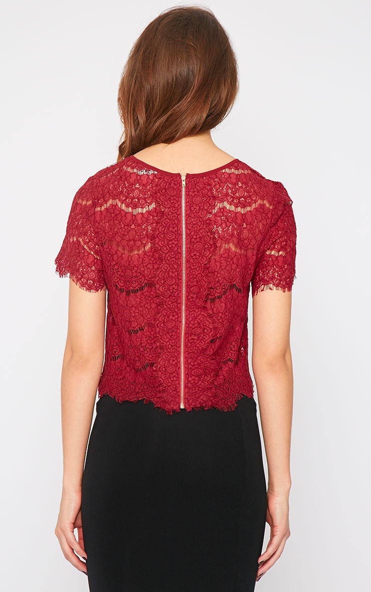 Ninette Wine Lace Crop Top  2