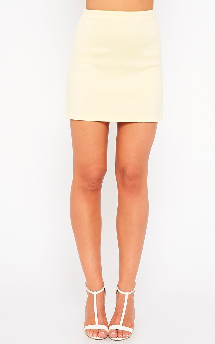Lauryn Lemon Scuba A Line Skirt 2