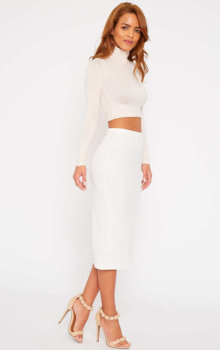 Basic Nude Roll Neck Crop Top 3