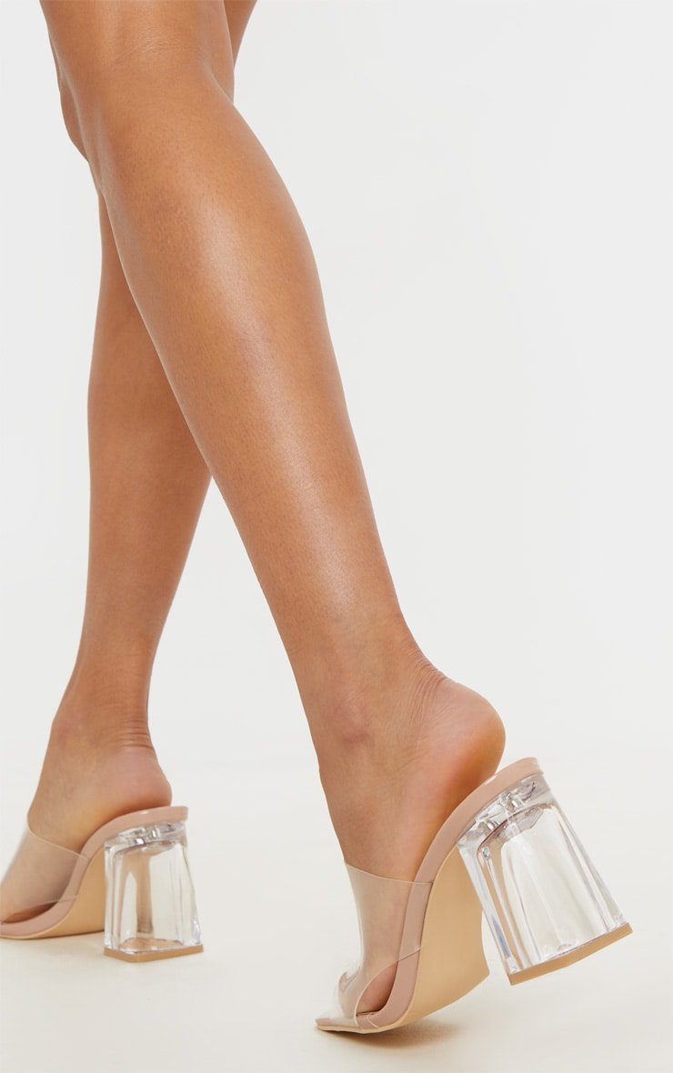 Nude Clear Block Heel Mule 1