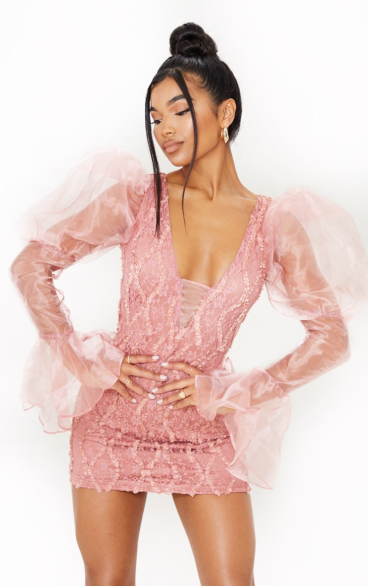 Pink Organza Sleeve Lace Bodycon Dress 1