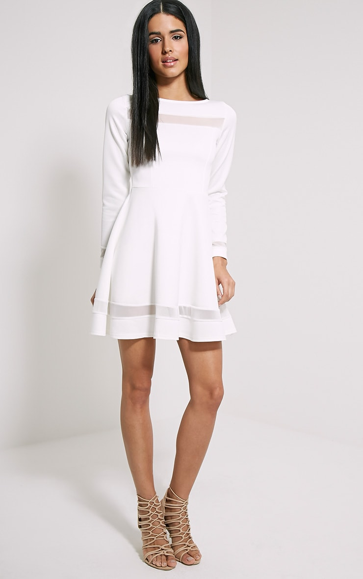 Leyah Cream Mesh Insert Skater Dress 2