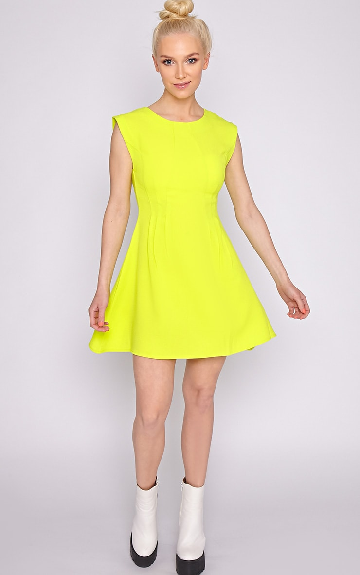 Billie Lime Skater Dress 3