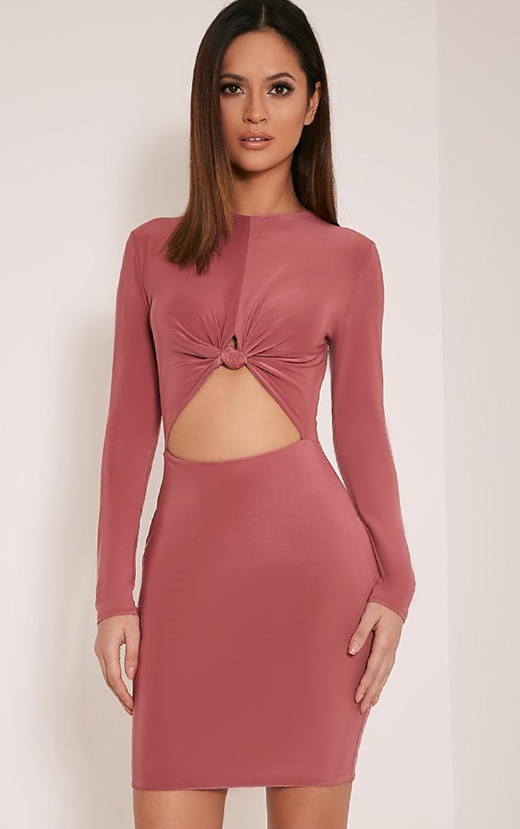 Zafia Rose Long Sleeve Mini Dress 1