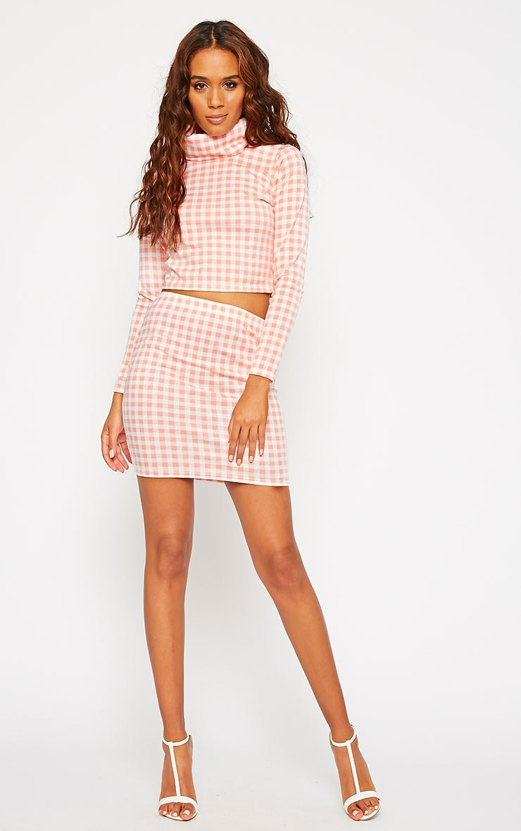 Belle Pink Gingham Roll Neck Crop Top 3