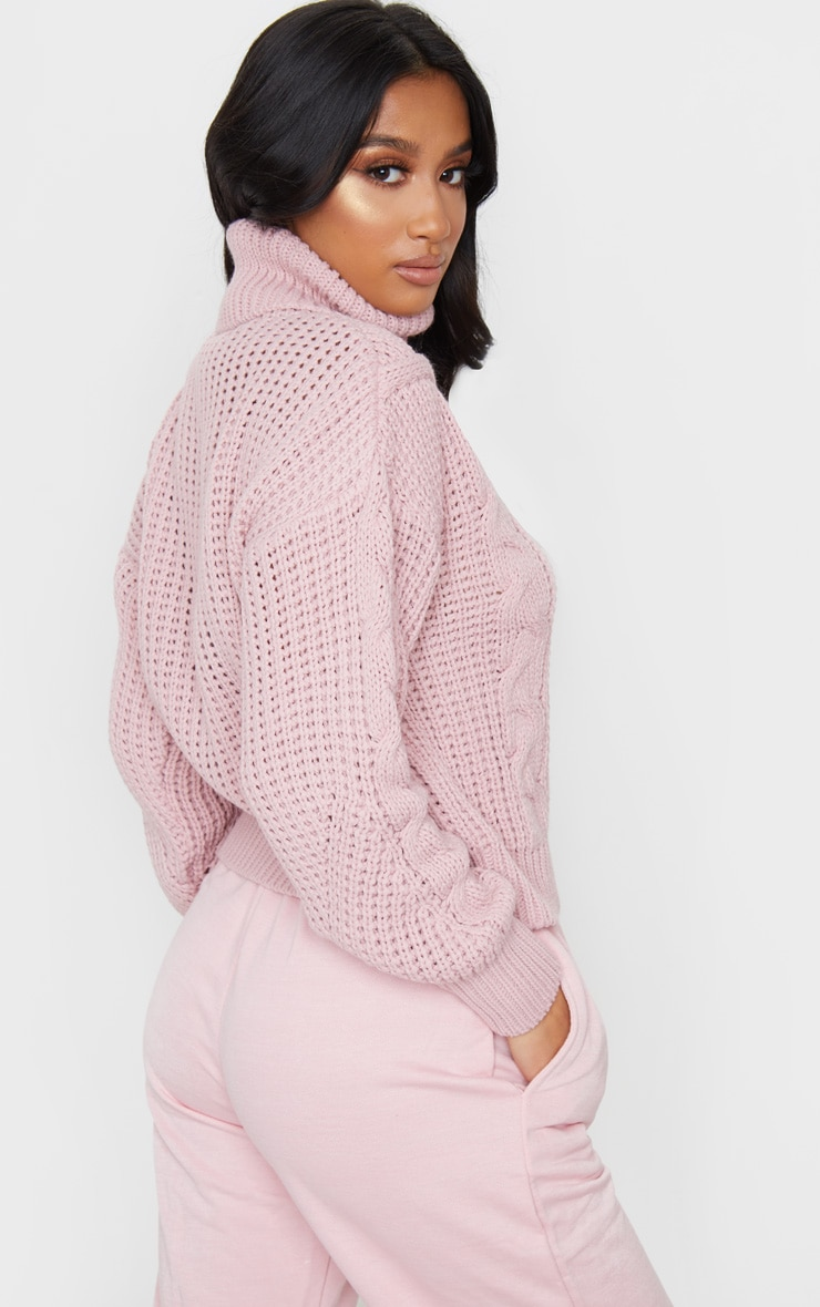 Petite Blush Roll Neck Knitted Long Sleeve Sweater 2