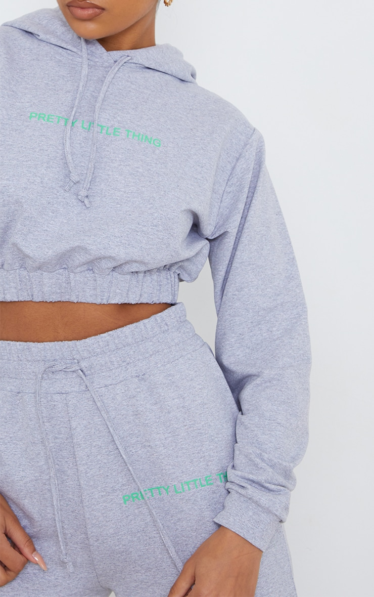 PRETTYLITTLETHING Grey Elasticated Hem Cropped Hoodie 4