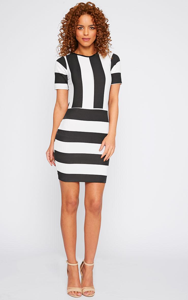 Tiffany Monochrome Stripe Mini Dress 5