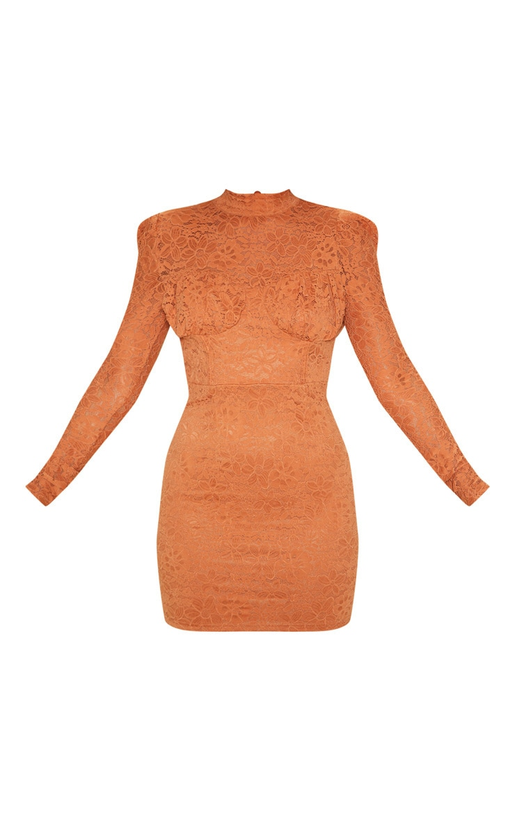 Chestnut Lace High Neck Open Back Bodycon Dress 3