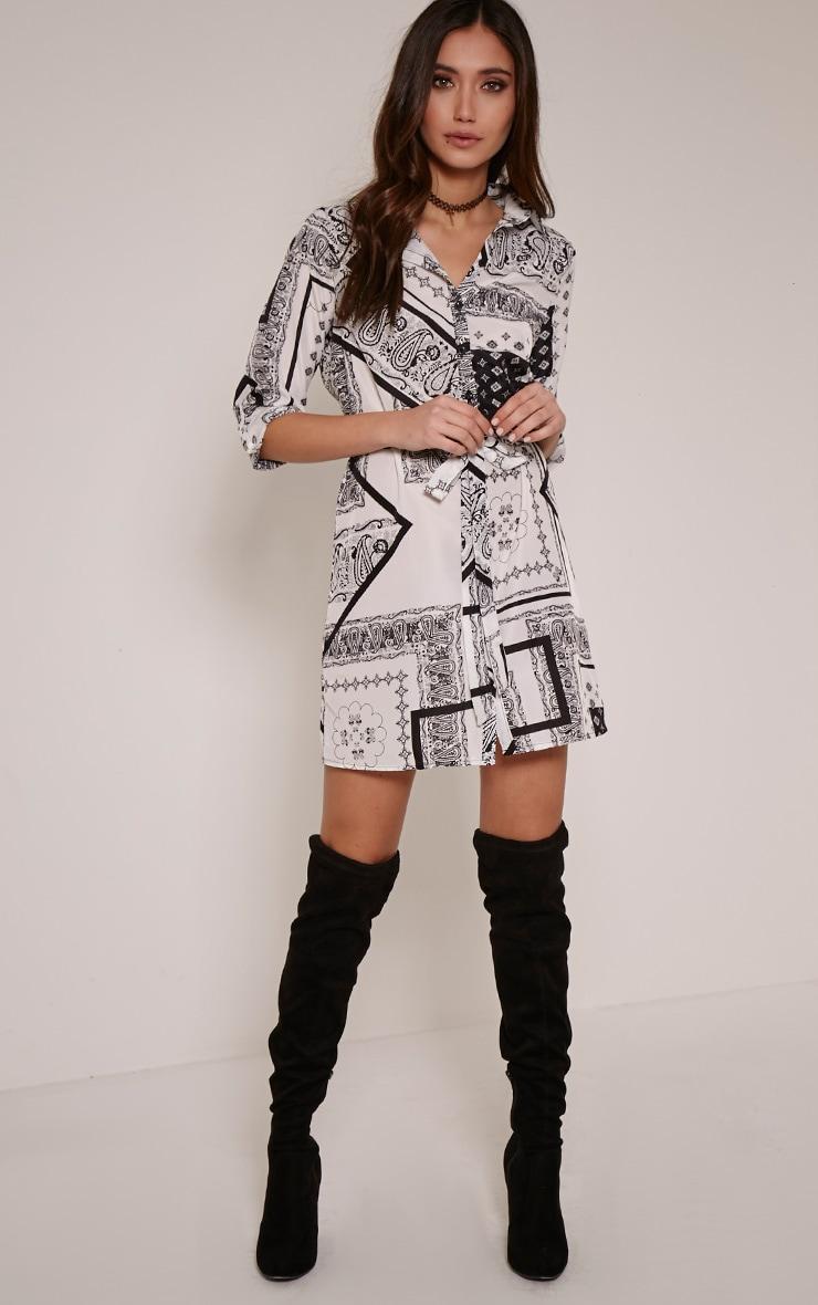 Gigi Monochrome Scarf Print Shirt Dress 3