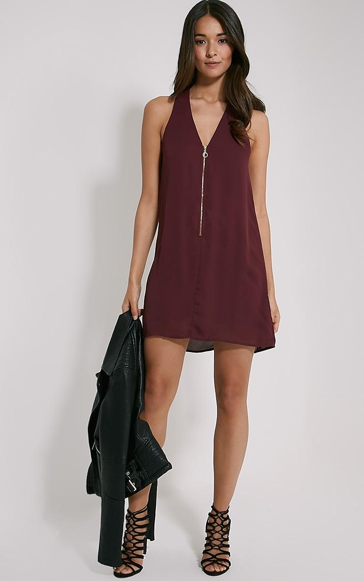 Essence Plum Zip Detail Dress 3
