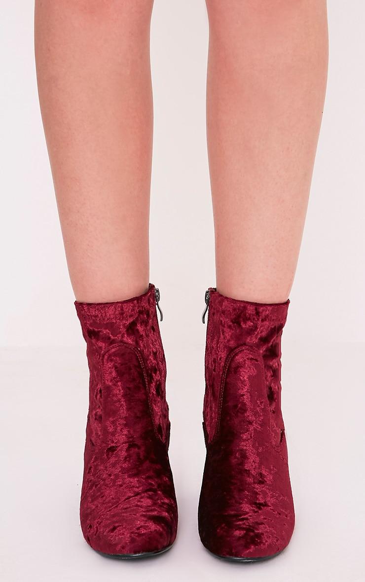 Hayden Wine Crushed Velvet Ankle Boots 2