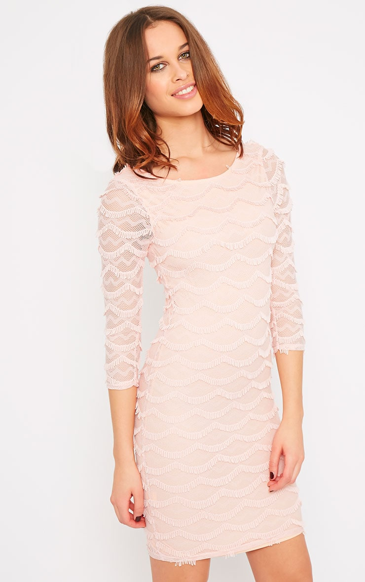 Valentina Pink Eyelash Sleeve Dress 1