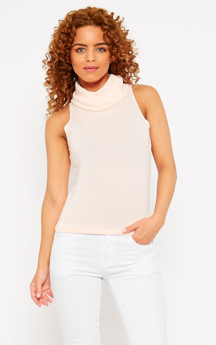 Polly Nude Knitted Roll Neck Sleeveless Top  1