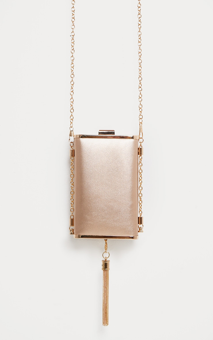 Rose Gold Tassel Box Bag