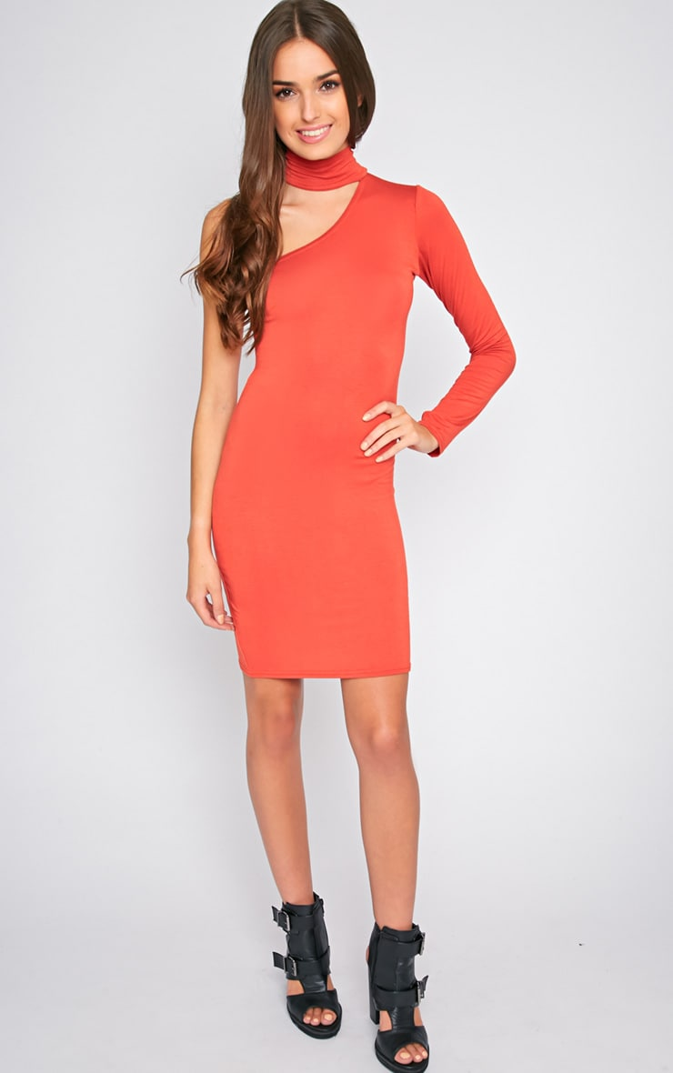 Eileen Orange One Shoulder Dress 1