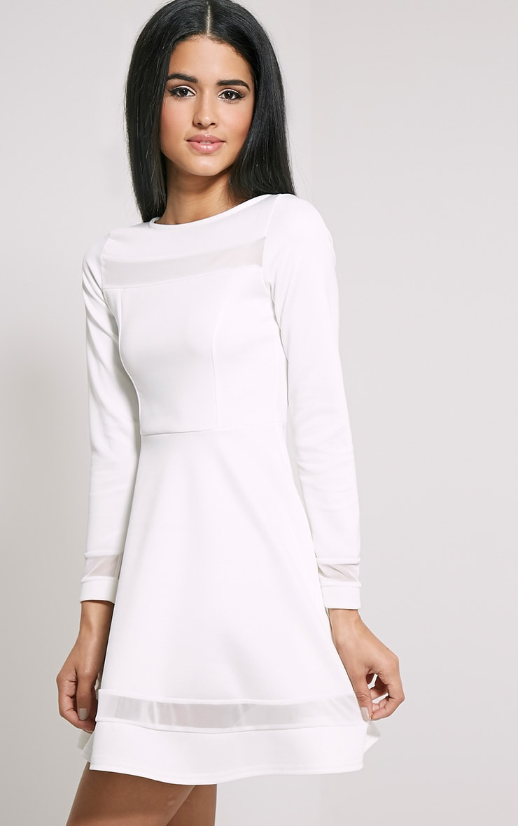 Leyah Cream Mesh Insert Skater Dress 3