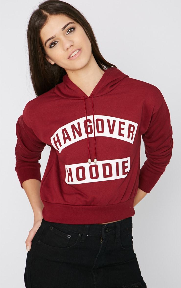 Macee Burgundy Cropped Hangover Hoodie 1