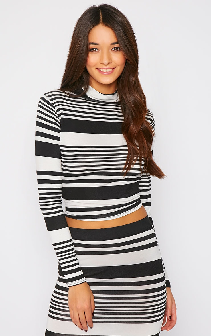 Emlyn Monochrome Striped Turtle Neck Crop Top  1