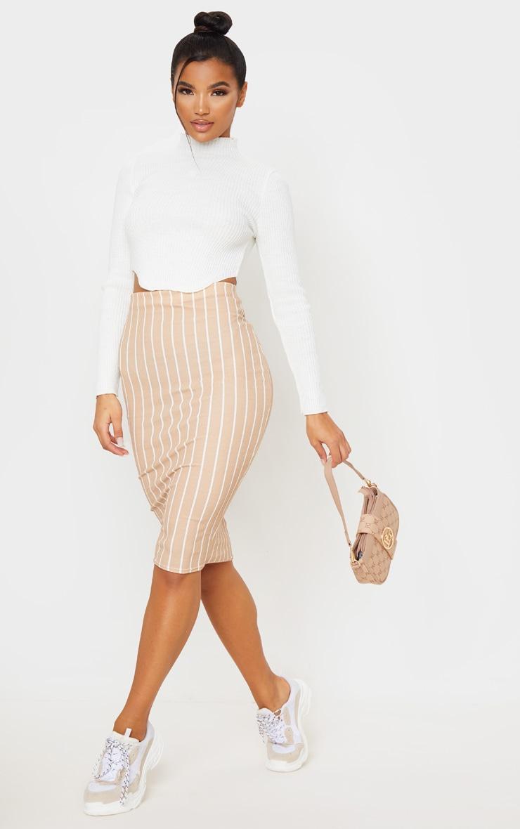 Stone Stripe Midi Skirt  1