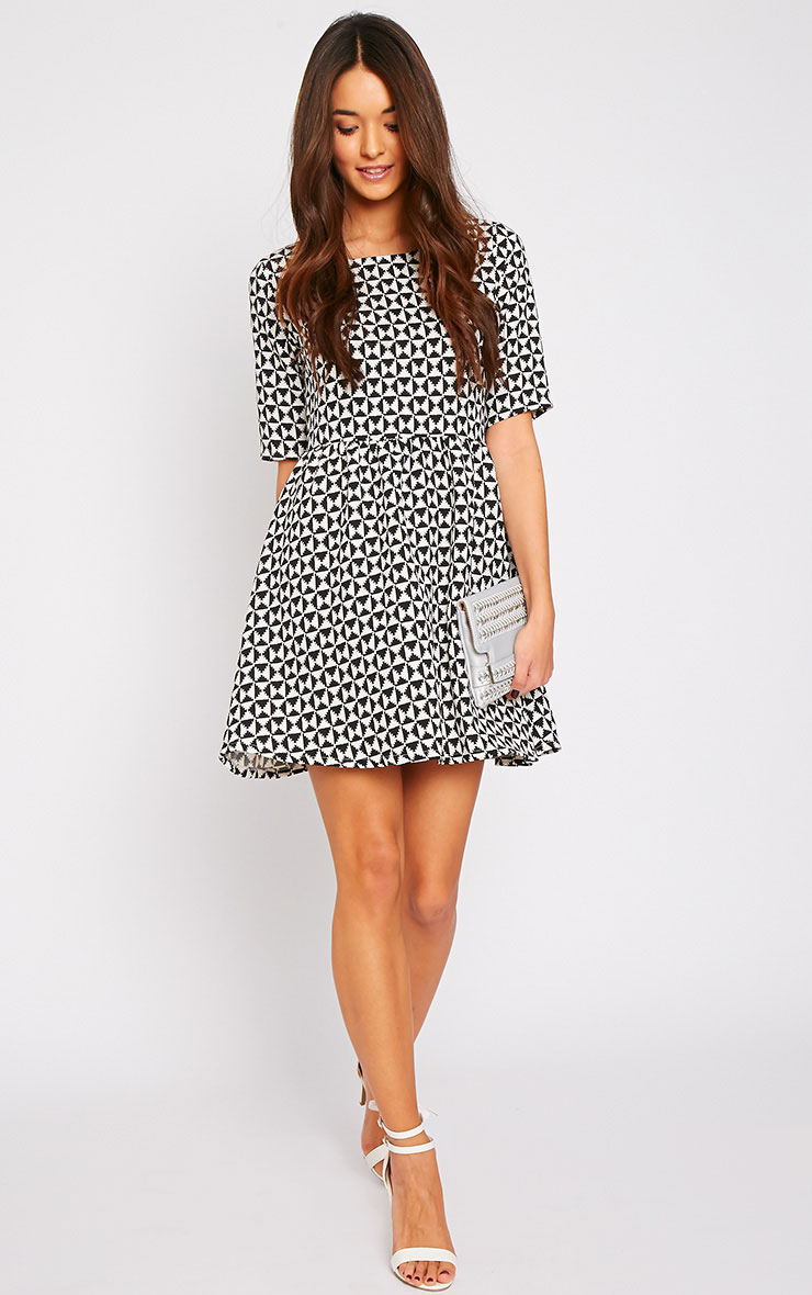 Kelly Monochrome Print Skater Dress 3