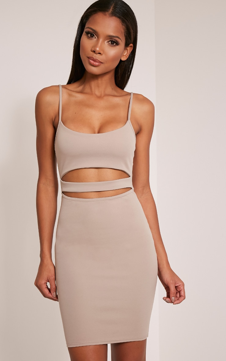 Roxanne Taupe Cut Out Mini Dress 1