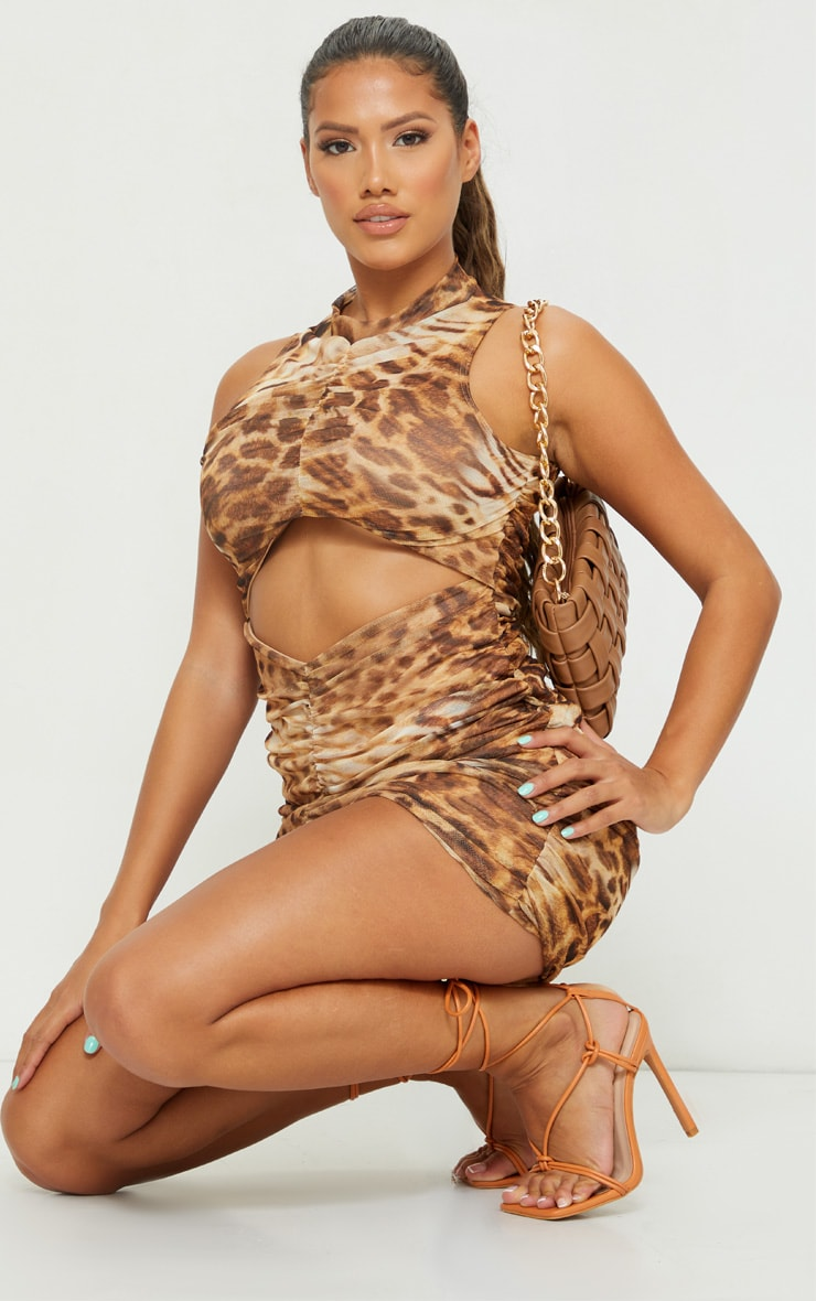 Shape Brown Animal Print Mesh Ruched Side Bodycon Dress 3