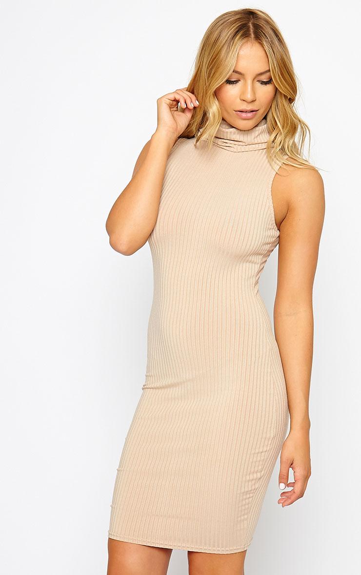 Marissa Camel Ribbed Turtle Neck Mini Dress 1