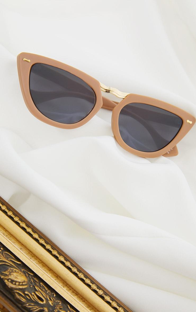 Tan With Gold Bar Chunky Cat Eye Sunglasses 3