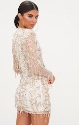Freyana Rose Gold Sequin Detail Long Sleeve Bodycon Dress 2