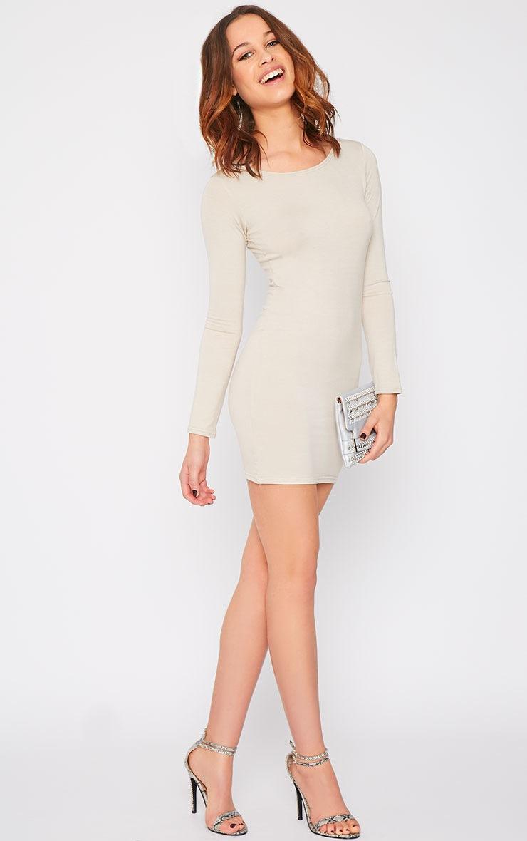 Basic Stone Long Sleeve Jersey Mini Dress 3