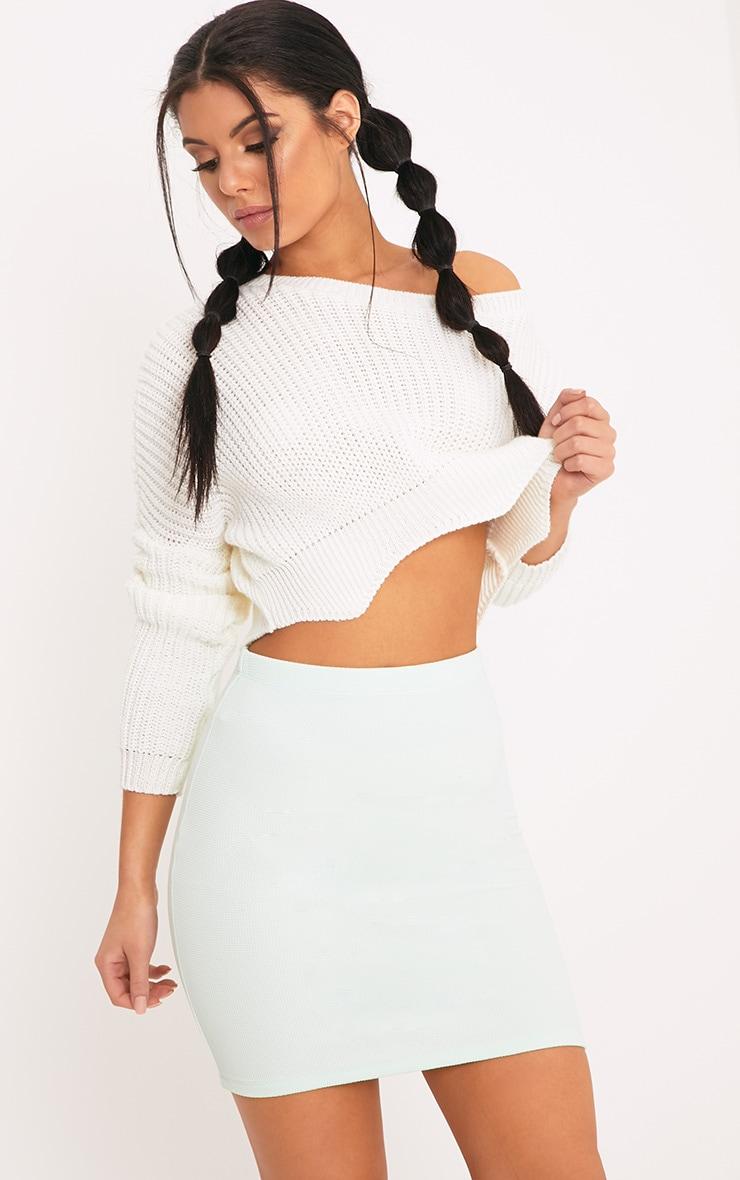 Steffy Mint Textured Mini Skirt 6