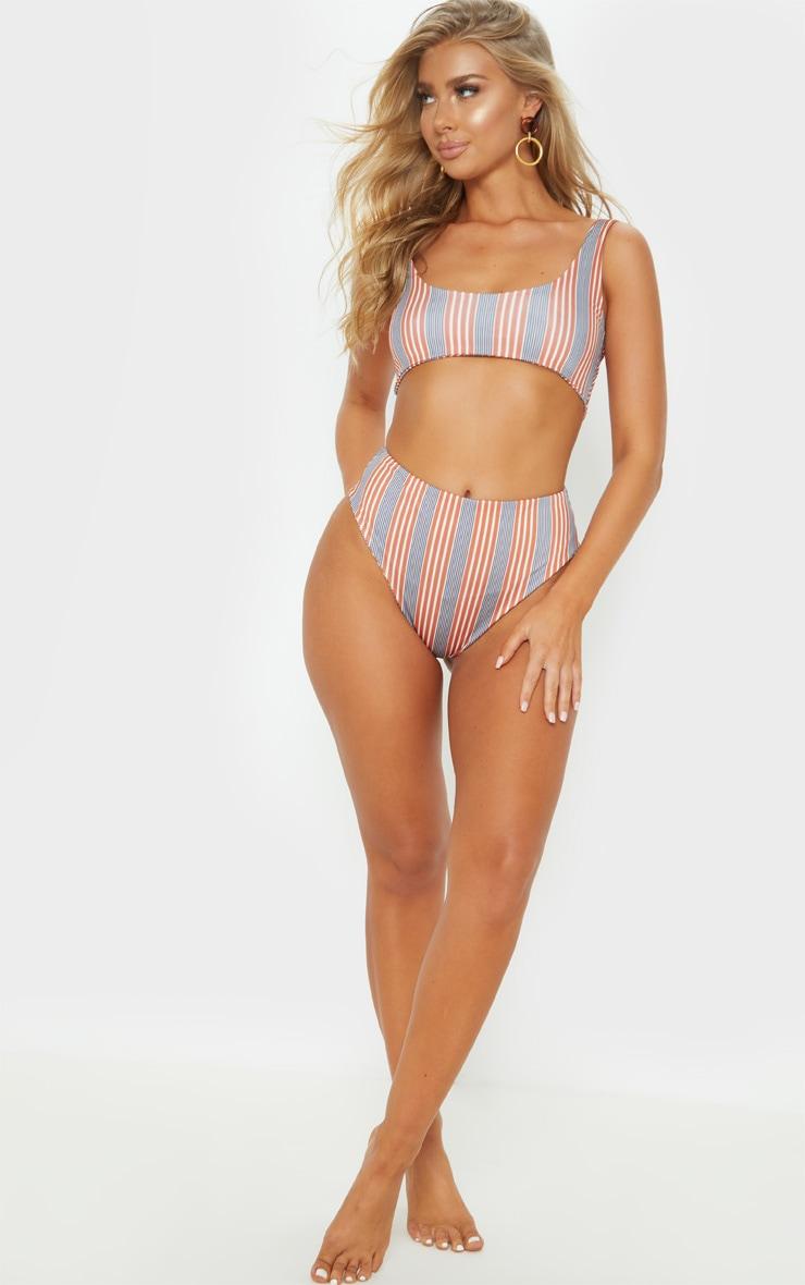 Brown Double Stripe High Waisted Bikini Bottom 6