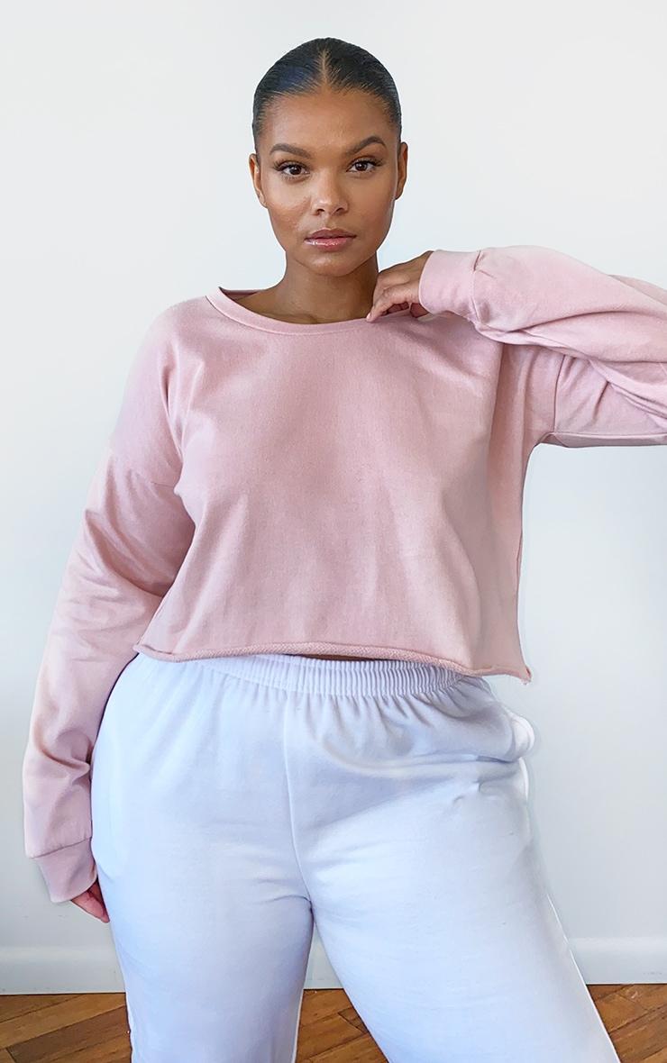 Plus Beau Pink Cut Off Crop Long Sleeve Sweater 1