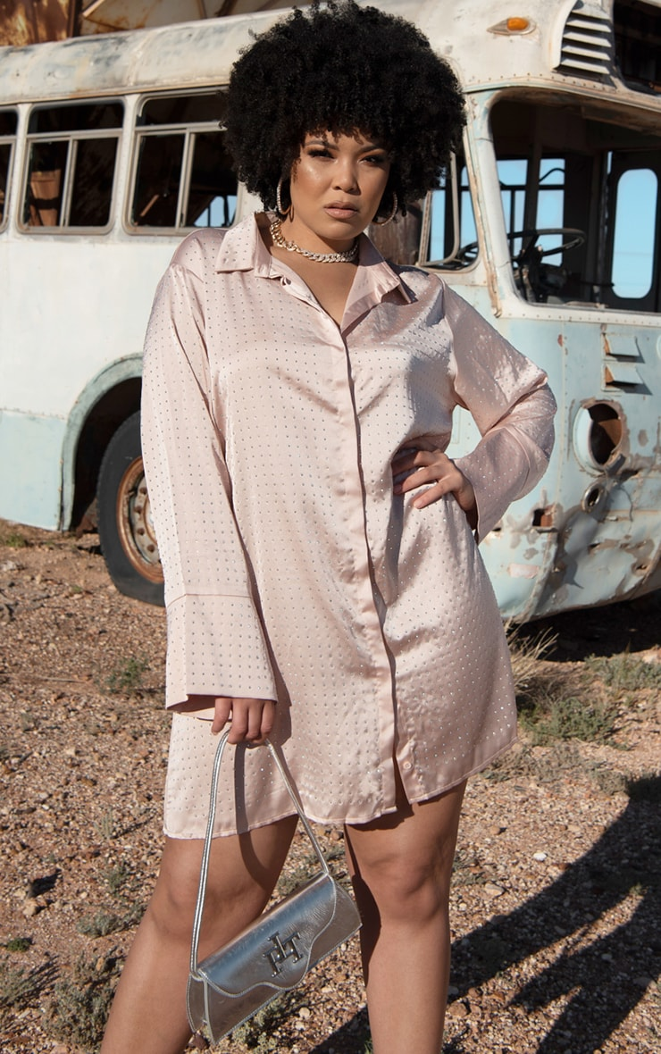 Plus Pink Sparkle Oversized Shirt Dress
