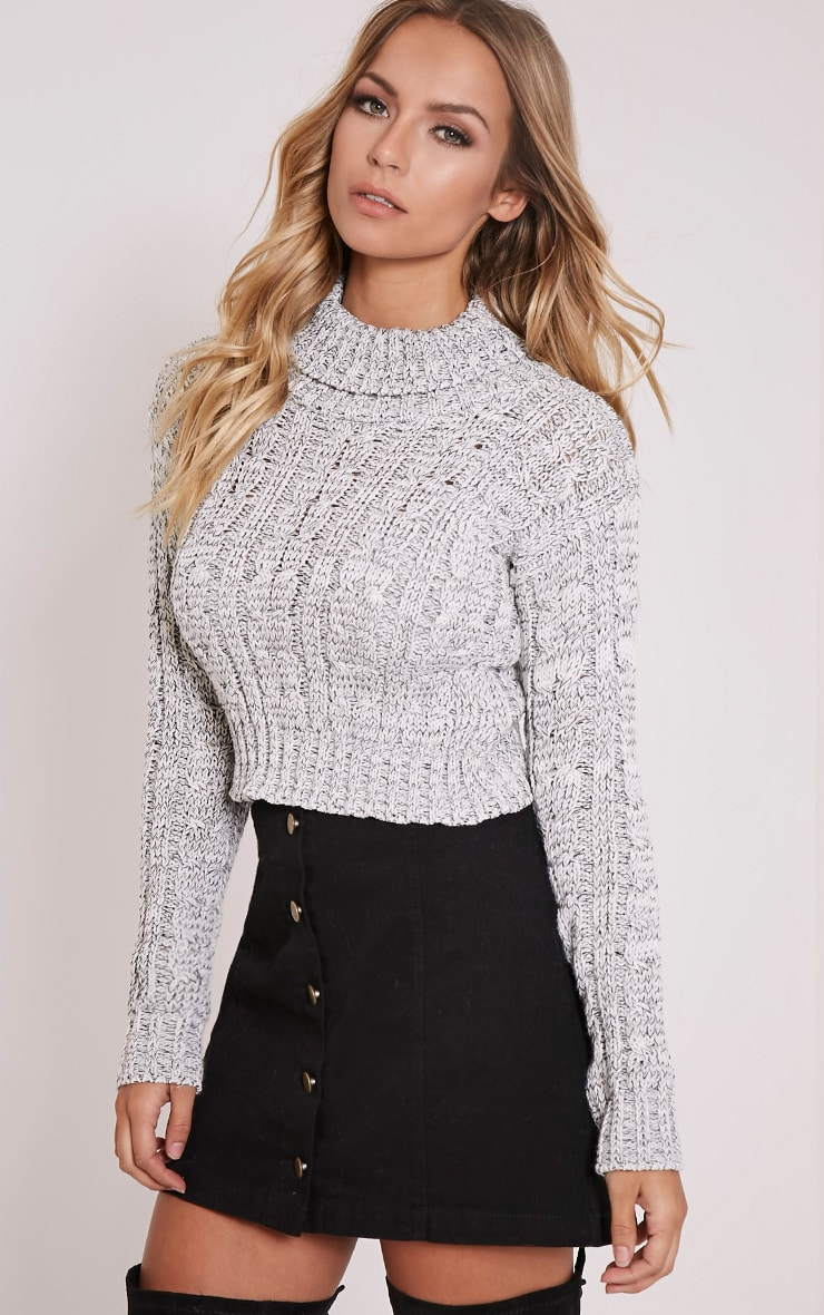 Brook Grey Cable Knit Roll Neck Crop Jumper 4